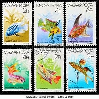 2019 STAMP / PC LOVERS # 6