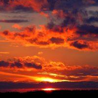 PCOAT: Sunset