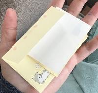 Mini Letter
