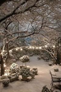Pinterest - Winter Scenes