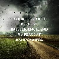 Stream of Consciousness (SOC) Ltr_Nov #1
