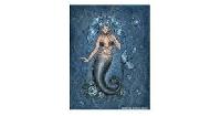 PCOAT: Mermaid