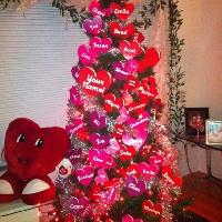 Christmas Valentine's Day Goodies Swap - USA