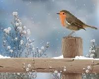 Put winter on!