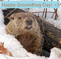 Groundhog Day profile decorations