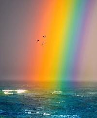 USATC: April Monthly Swap: RAINBOW