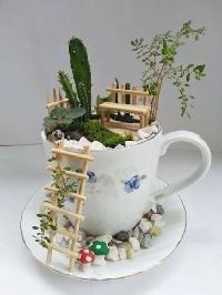 Pinterest - Miniature  or Fairy Garden