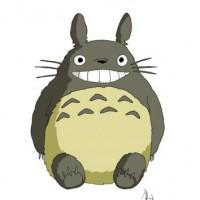 Deco profile Kawaii **Totoro**