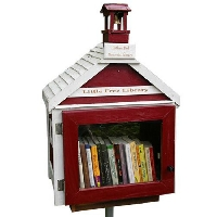Little FREE Library Book review
