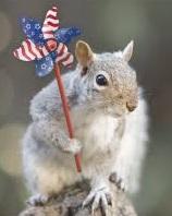 Animals Celebrating 4th of July profile decoration