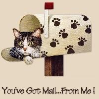 LSRUS Cat Swap! 😺