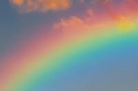 Swap the Rainbow--Purple