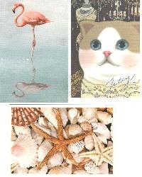 PH: Profile Postcard (Blank or Naked) #3
