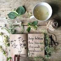 🌿Happy Witch Mail: Medicinal Plants and Herbs