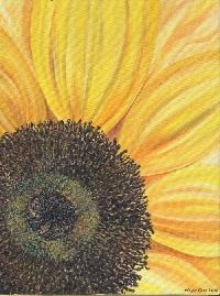 SUSA - ATC w/ a Sunflower