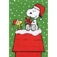 SH: Christmas Card with a Christmas Fun Fact