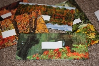 ManE: THREE Old Calendar Envelopes!
