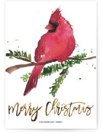 MissBrenda's Christmas Card Swap #11 ~ Bird