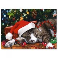 🎄🐱Meowy Christmas Cards USA 2020