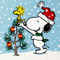 Peanuts or Snoopy Christmas Card USA Only