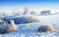 ESO: Winter themed blind flat envie