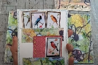 YTPC:  4 x 6 Journal Cards with Back Pockets