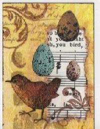 Bird ATC (9o96o #310372)