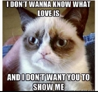 I ❤️ Grumpy Cat - USA
