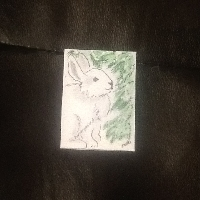 ACTs: Rabbit Coin