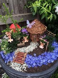 Fairy Garden Swap