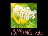 Hello Spring 2021