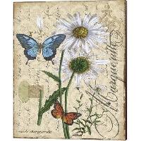 VC:  Butterflies & Botanicals ATC