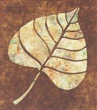 QnT challenge POPLAR leaf #4