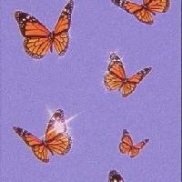 Butterfly Swap 🦋