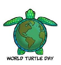 Profile Deco Swap - World Turtle Day