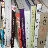 Tbr pile (books)
