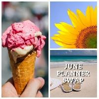 Monthly Planner Swap: June