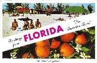 Florida Scavenger Postcard Hunt #1