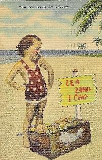 She Sells Sea Shells Postcard Swap