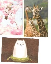 PH: Send 3 Non-Touristy Postcards #18