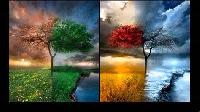 Four Seasons ATC's