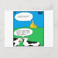 Zazzle Postcards #3(Edited)