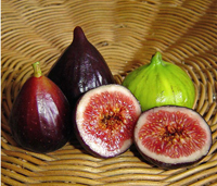 E-recipes by Alphabet: F is for Figs!