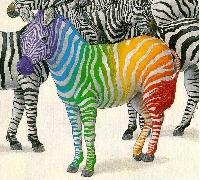 Zebra ATC