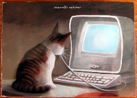 Cat Postcard Swap #2: International