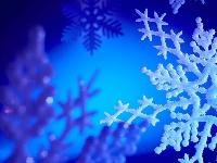 * Winter Wonderland * Random Flat Envie *