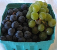 ♥ Purple and Green Grapes Fabric Swap ~ #9