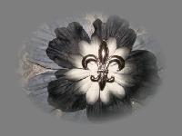 Prima Flowers Swap