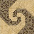 Block of the Month Snail's Trail