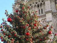 A Paris Christmas-Part 2
